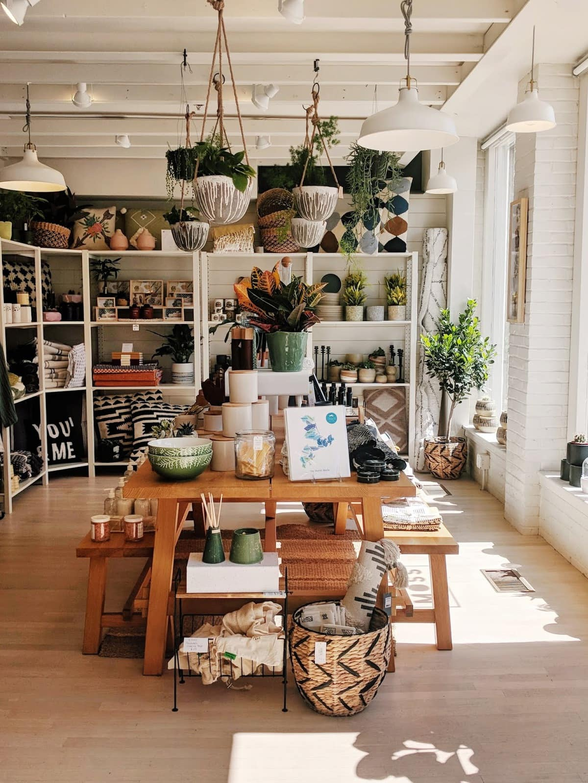 Oak+Moss shop in Salem, with hanging plants and an aesthetic white interior