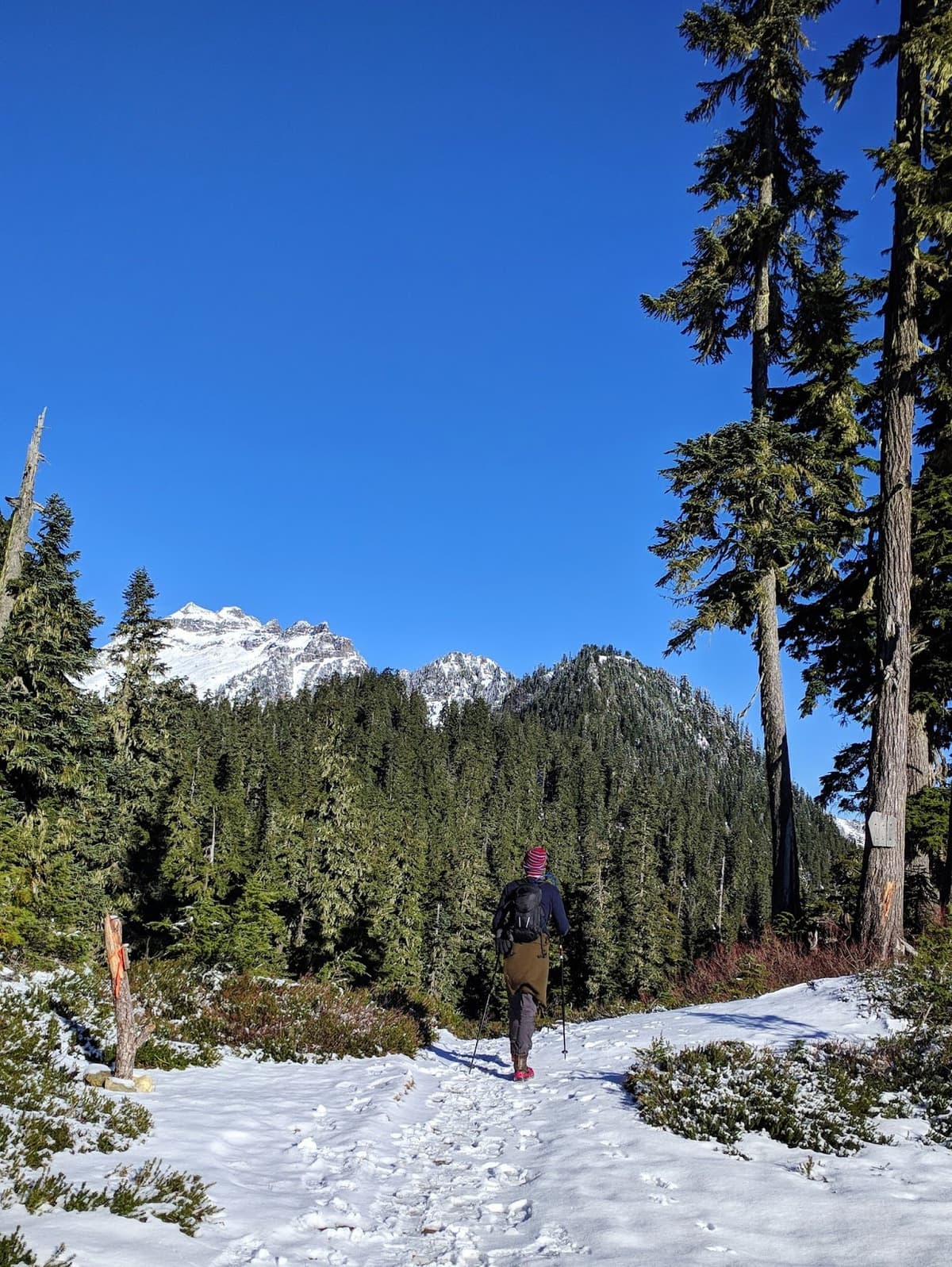 hiking through the snowy part of Blanca Lake with evergreen trees and glaciers in the distance