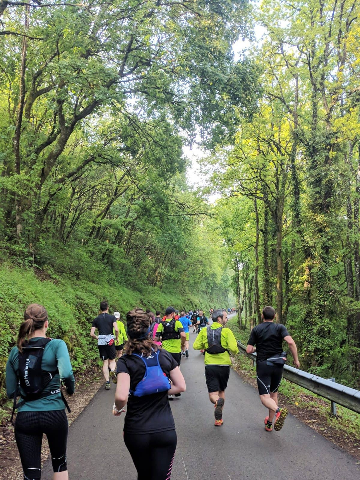 Trail runners in the forest in the spring at the Trail des Forts de Besaçon 2019