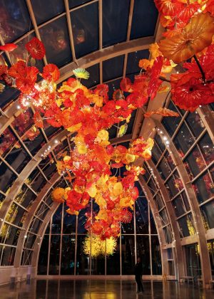 Chihuly Garden and Glass at night - the insta-famous flower installation at the Glasshouse