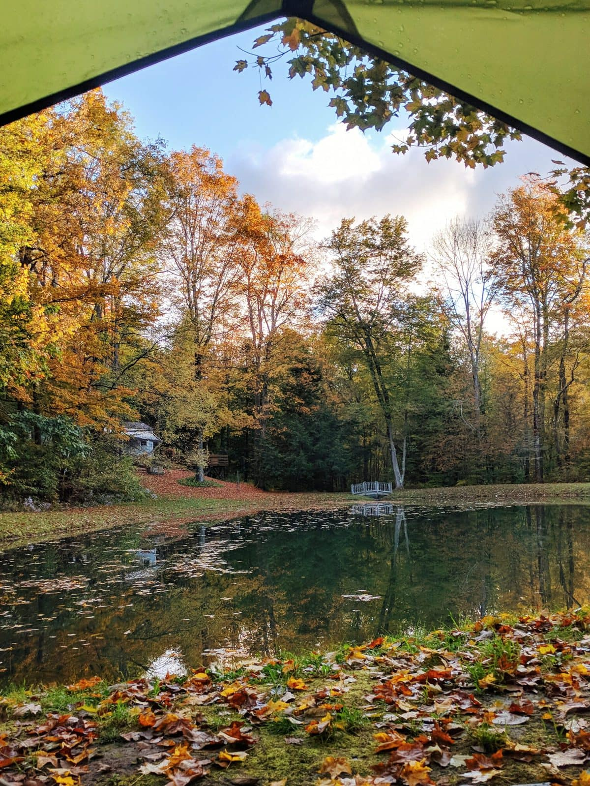 Mt Greylock Campsite Park - view from a pond tent site in the fall