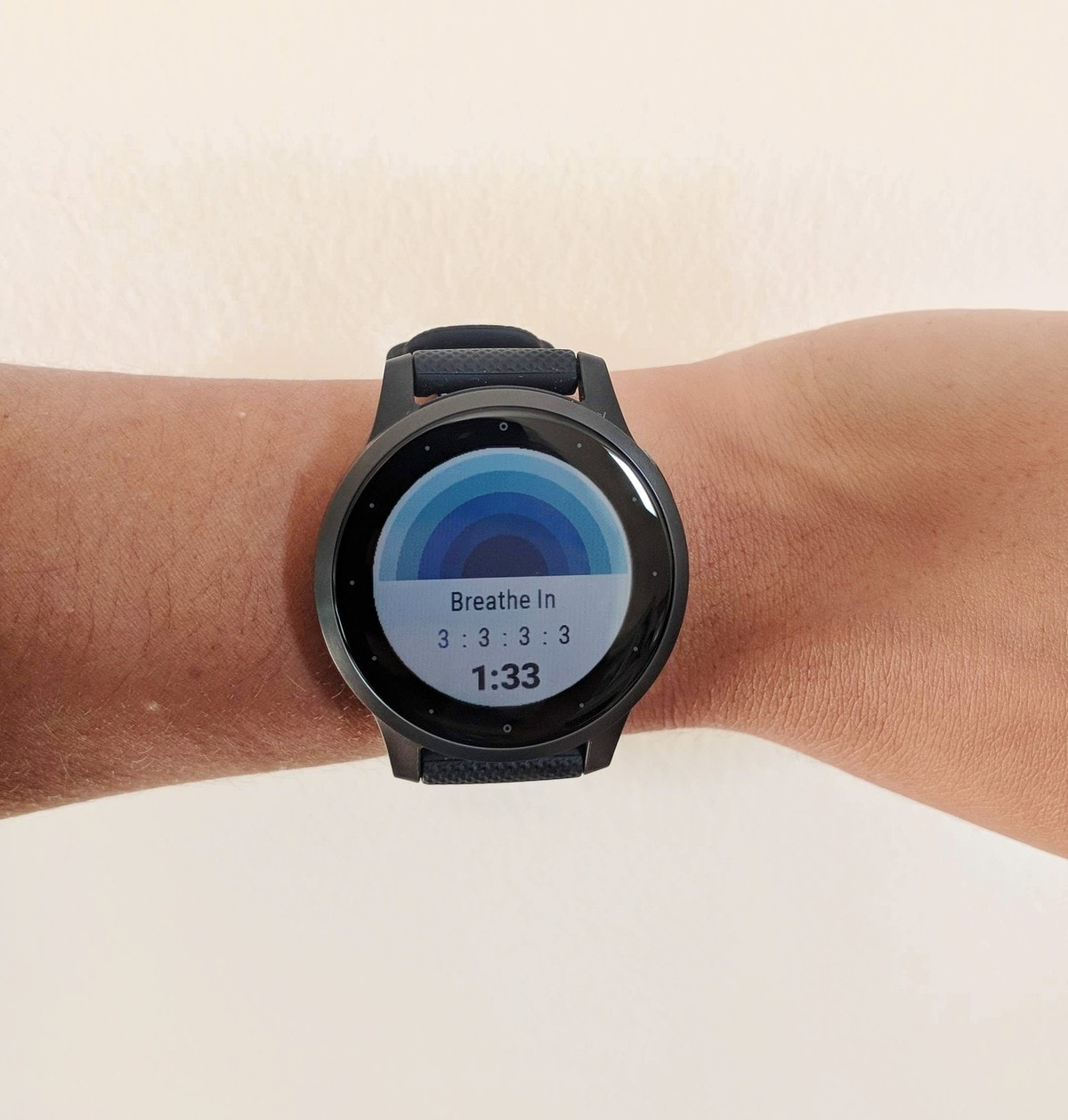 garmin vivoactive 4s display