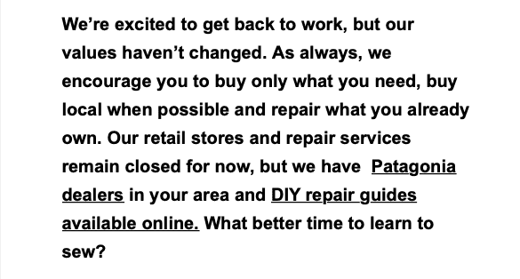 patagonia email encouraging customers to only buy why they need