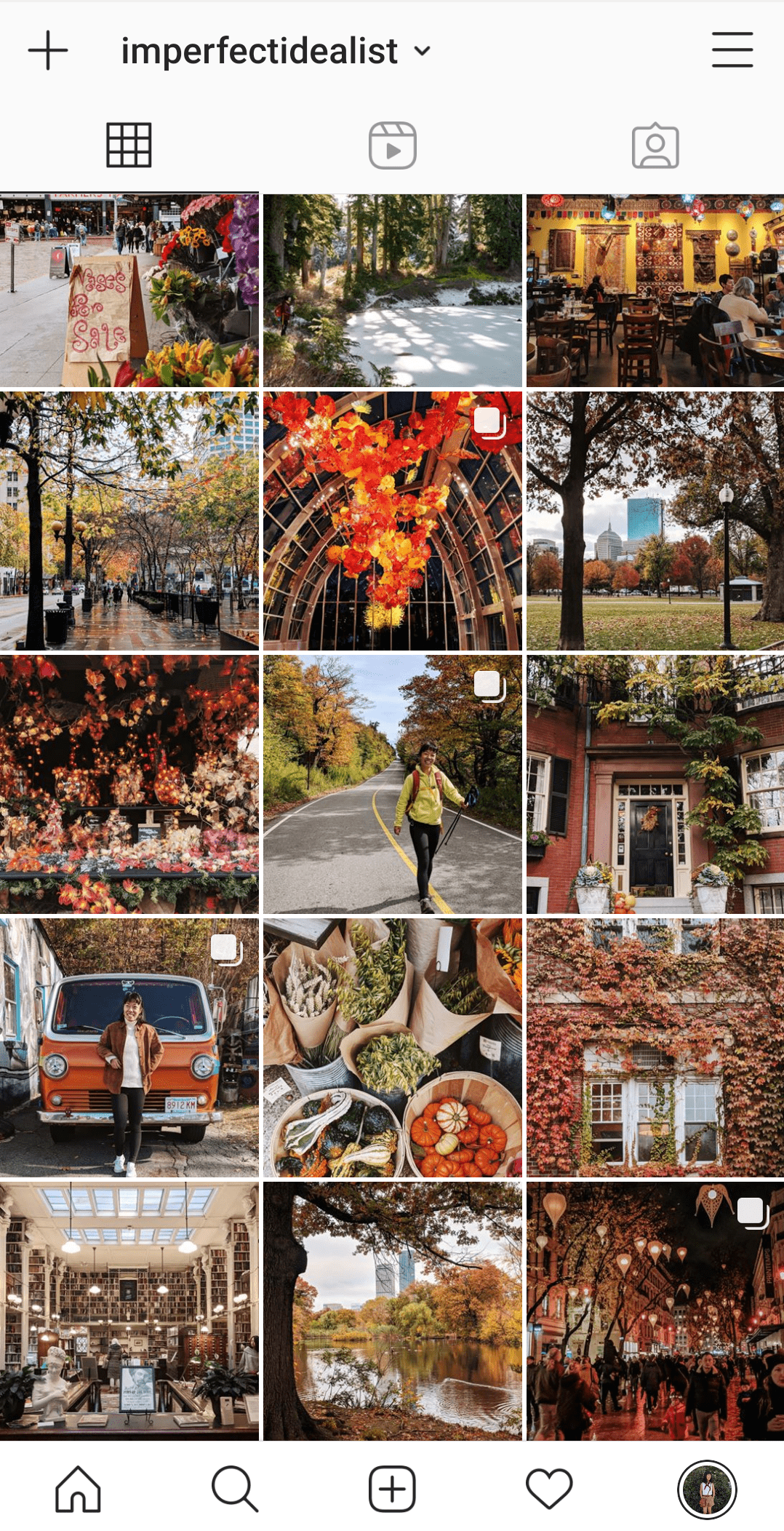 Screenshot of my Instagram feed from last fall