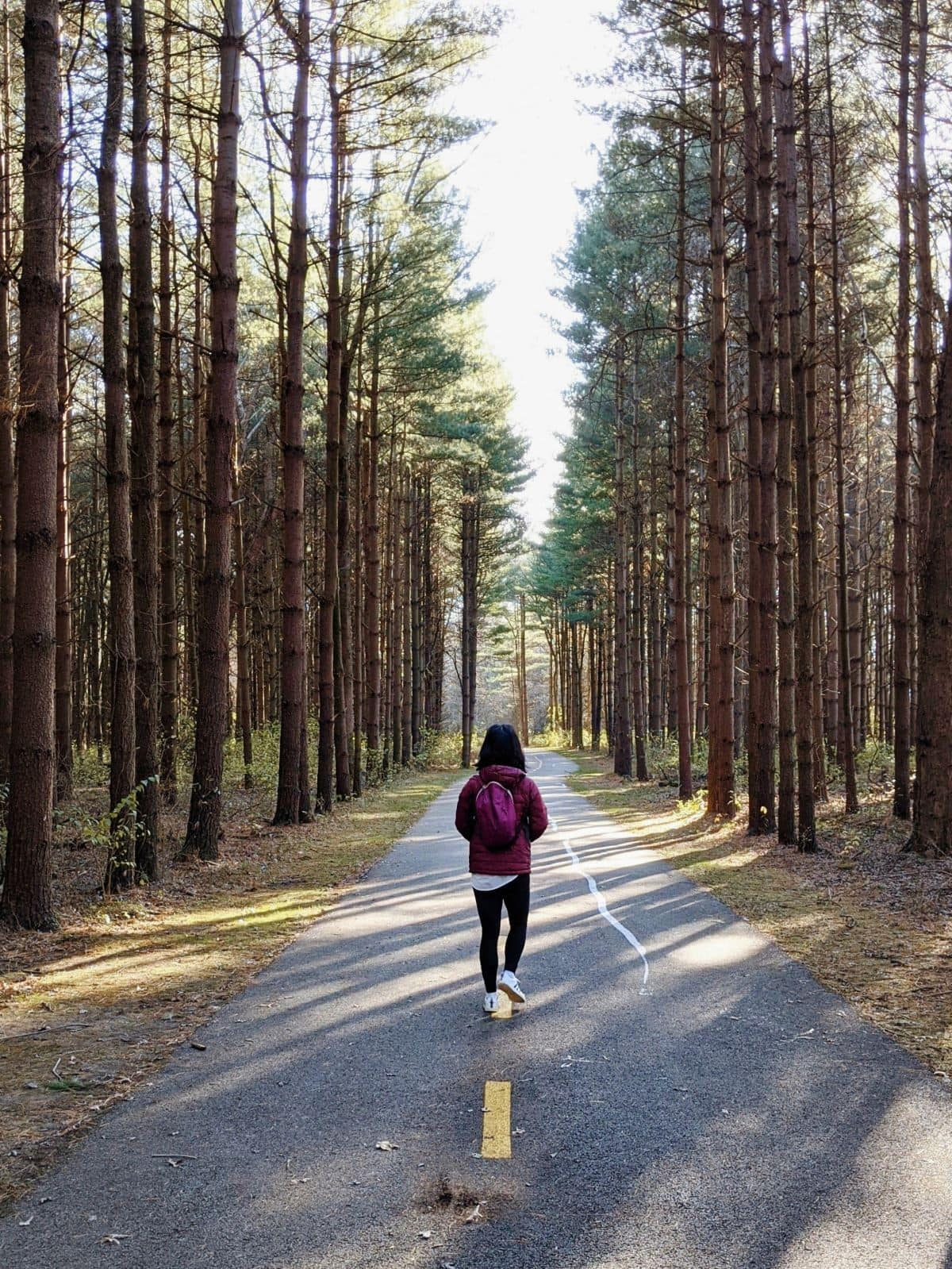 Back of woman walking on a paved trail through a forest of tall pine trees at Tall Pines Area Walnut Woods